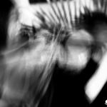 Wrekmeister Harmonies / Kayo Dot / Miserable @ Trans Pecos – 11.4.16