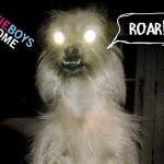 "New Beastie Boys Single Released – ""Make Some Noise"""