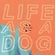 K. Flay – Life as a Dog